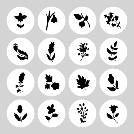 holly day: Leaves and flowers icons set. Vector design elements. It can be used as - logo, pictogram, icon, infographic element.