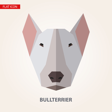 bullterrier: Bullterrier head vector illustration. It can be used as - logo, pictogram, icon, infographic element.