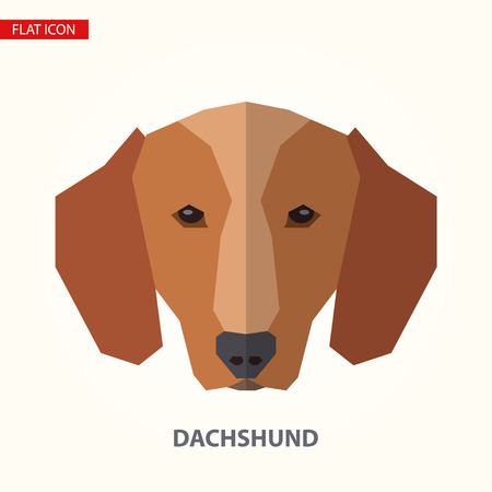 Dachshund head vector illustration. It can be used as - logo, pictogram, icon, infographic element.