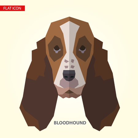 Bloodhound head vector illustration. It can be used as - logo, pictogram, icon, infographic element.