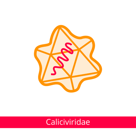 Caliciviridae. Classification of viruses. Vector biology icons, medical virus icons.