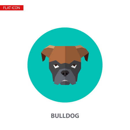 Bulldog head vector flat icon on turquoise circular background. It can be used as - logo, pictogram, icon, infographic element.