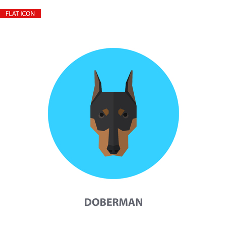 Doberman head vector flat icon on turquoise circular background. It can be used as - logo, pictogram, icon, infographic element.