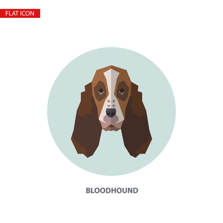 Bloodhound head vector flat icon on turquoise circular background. It can be used as - logo, pictogram, icon, infographic element. Illustration