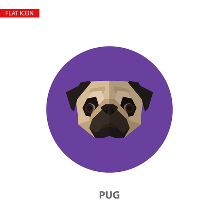 Pug head vector flat icon on turquoise circular background. It can be used as - logo, pictogram, icon, infographic element. Illustration