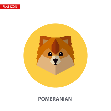 Pomeranian head vector flat icon on turquoise circular background. It can be used as - logo, pictogram, icon, infographic element.