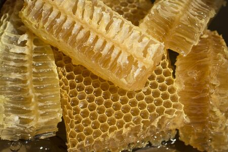 fresh honeycomb slices on a plate glisten in the sun