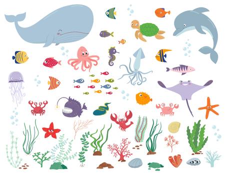 Meerestiere und Wasserpflanzen . Cartoon-Vektor-Illustration auf einem weißen Hintergrund Vektorgrafik