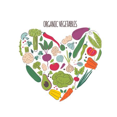 Organic vegetables hand drawn color illustration. Vegetarian nutrition vector sketch 일러스트