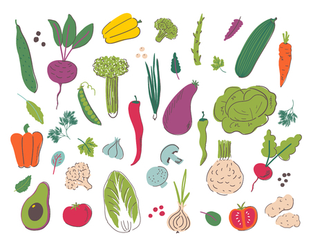 Vegetables hand draw illustration set. Organic and diet food. Healthy nutrition cartoon isolated elements