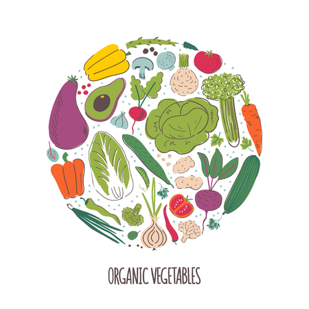 Organic vegetables hand drawn color illustration. Vegetarian healthy nutrition vector sketch. Isolated doodle