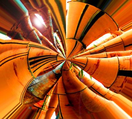 De bambú. Distorsión polar Foto de archivo