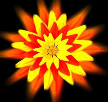 Mandala de flores rojas y amarillas. Expresión floral. expresionismo