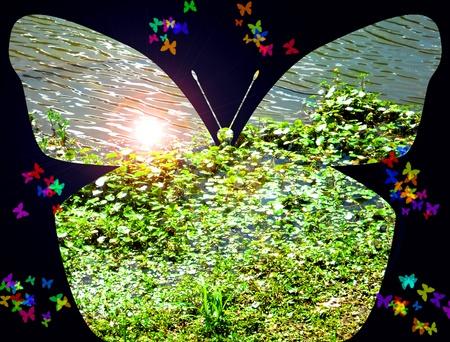 Un lago en la mariposa. Expresionismo