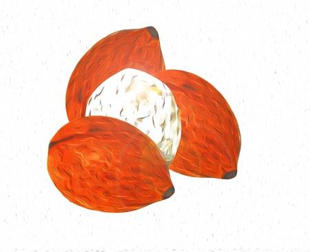 Aceite Achachair fruta pintar composición.