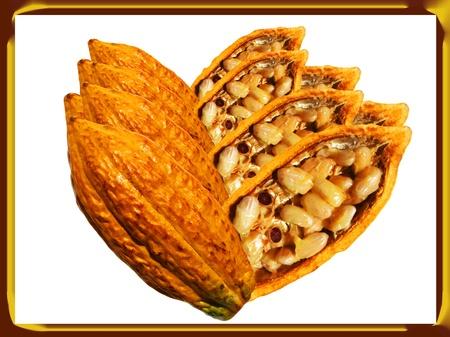 Los dioses alimentos Cacao Composición de frutas con marco