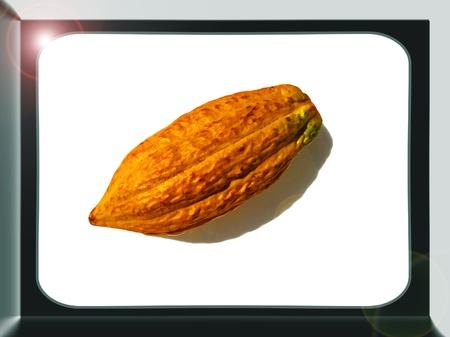Cocoa fruta entera con marco