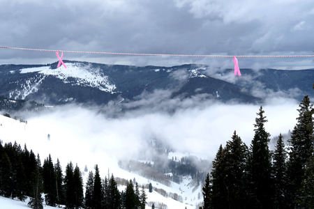 inversion: ski boundary tape pink