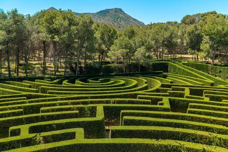Shrub green labyrinth in Tentegorra, Spain Stockfoto