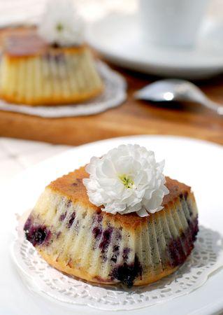 bilberry: bilberry muffins Stock Photo