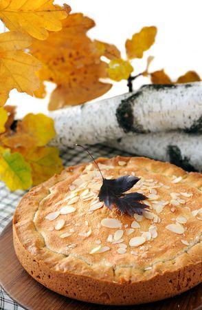 pumpkin-nut pie photo