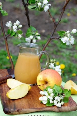 Still life with apples and juice under blossoming apple tree. photo
