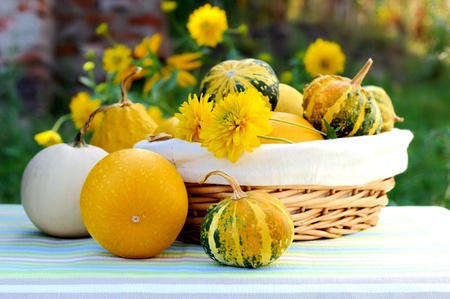 A basket full of pumpkins with autumn yellow flowers.