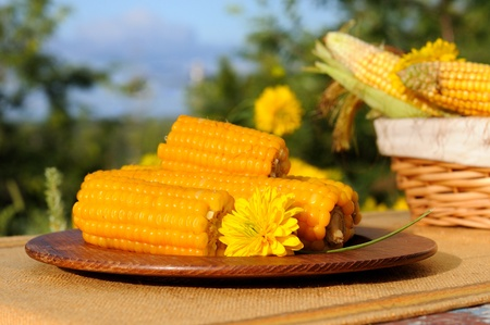 Cooked and raw corncobs with yellow flowers  outdoors. photo