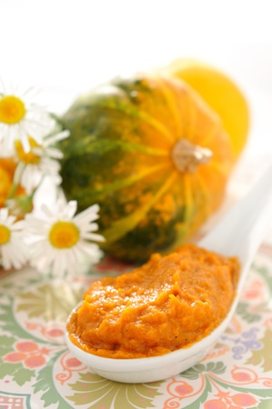 A spoonful of vegetable puree (squash, carrot, onion, spices ..) pumkin and chamomile as a background.