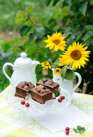 Chocolate cakes and teapot in the garden