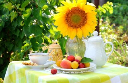 tea garden: Afternoon Tea  Stock Photo