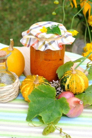 Vegetable puree made of squash, carrot and other vegetables