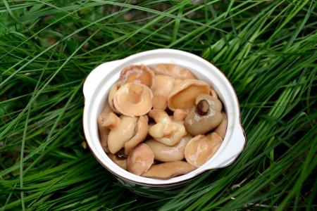 Full bowl of homemade wild  forest  mushrooms  photo