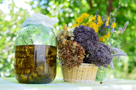 Dried healing herbs and herb extract.