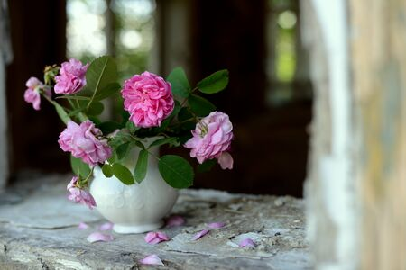 Still life with faded roses in an abandoned house