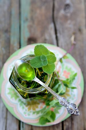 Homemade mint jam with mint sprig
