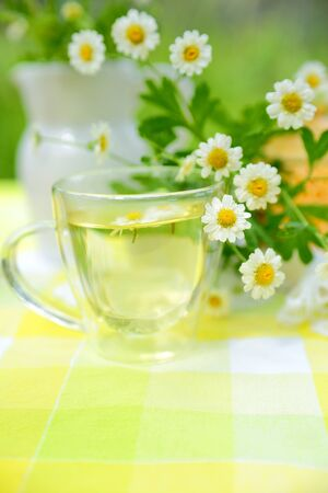 Cup of chamomile tea Stock Photo