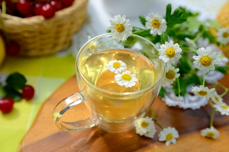Cup of chamomile tea 写真素材
