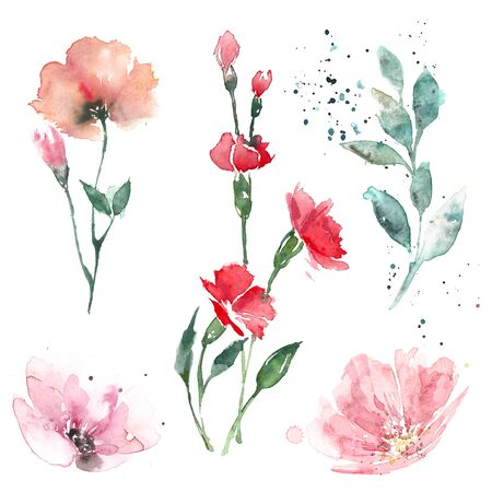Light watercolor illustrations of flowers and leaves in pastel colors. Stock Photo