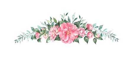 Arrangement of pink camellia flower, Watercolor illustration