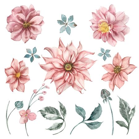 Set of watercolor dahlia flowers, leaves and sprigs of eucalyptus for wedding design invitations. Flower shop logos.