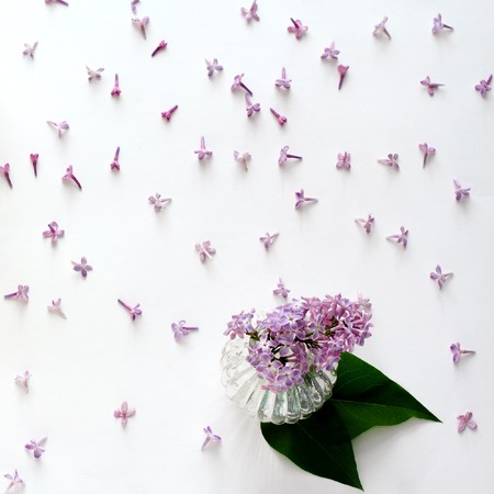 Fresh Lilac Flowers, Vase For Decoration, Top View, Flat Lay ... on umbrella top view, desk top view, tree top view, couch top view, table top view, plate top view, sculpture top view, rug top view, bedroom top view, spoon top view, apple top view, box top view, plant top view, rose top view, stool top view,