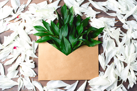 white petals on wooden background. open envelope of craft paper with buds and leaves of peonies in it. flat lay, top view