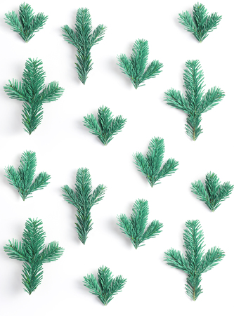 spruce branches pattern on a white background. vertical frame. simple flat lay composition. Stock Photo