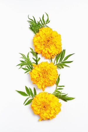 fall composition. orange flowers on white background. flat lay, vertical frame Standard-Bild - 129486437