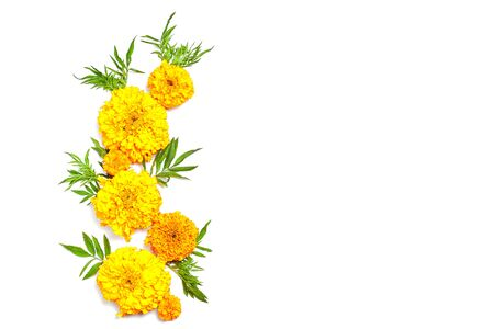 autumn concept. composition made yellow fresh flowers on white background. flat lay, copy space Standard-Bild - 129486441