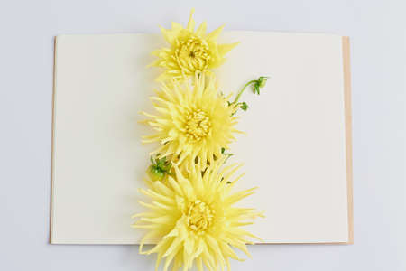 workspace concept. beautiful composition of yellow flowers and a notepad on a white desk. flat lay, copy space