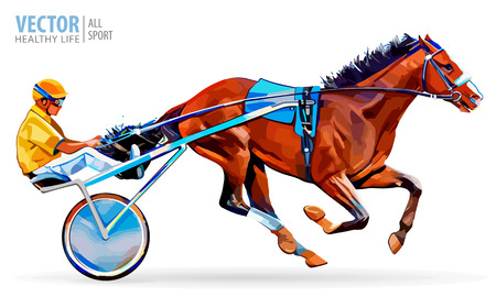 hippodrome: Jockey and horse. Champion. Racing. Hippodrome. Racing steed coming first to finish line. Chariot with horse and rider. Stallion race track. Harness racing at the Hippodrome. Vector illustration.