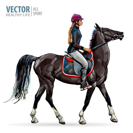 Cavallo con cavaliere. Jockey sul cavallo. Equitazione. Donna, cavallo. Sport. Illustrazione vettoriale.