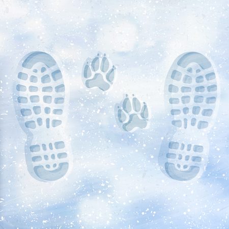 Human and dog footprints on surface white winter snow. Overhead view. Texture of snow surface.